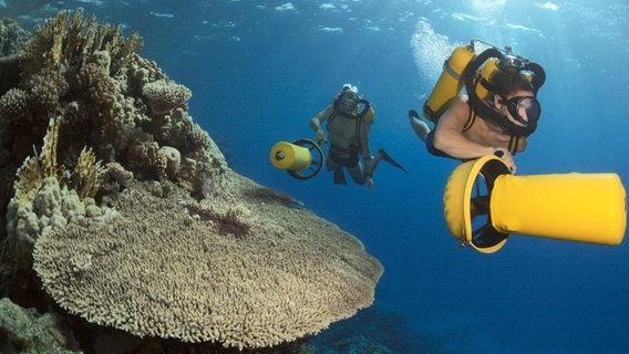 Cousteau 1